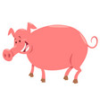 pig farm animal character cartoon vector image