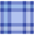 seamless tartan pattern in blue and white vector image