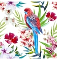 Tropical bird pattern vector image vector image