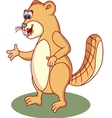 beaver cartoon vector image vector image