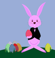 bunny and Ester eggs on meadow vector image