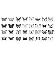 butterfly icon set simple style vector image