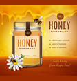 homemade honey advertising background vector image vector image
