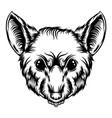 rat tattoo with sharp teeth vector image vector image