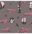 seamless pattern sakura tree and panda vector image