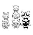 set cartoon cats face collection cute vector image vector image