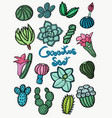 colorful set cactus design vector image