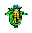 corn on cob with baseball hat mascot vector image