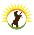 horse and sun icon vector image