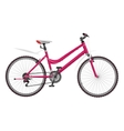 Ladys pink bike vector image vector image