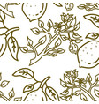 lemon fruit pattern seamless template vector image