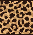 leopard skin seamless pattern wild cat texture vector image vector image