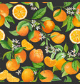 mandarin floral pattern seamless fruit vector image vector image