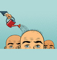 remedy for hair growth bald man poured from a vector image