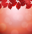 Autumn Border With Red Leaves vector image vector image