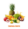 exotic tropical fruits composition vector image vector image