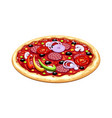 pizza italian traditional vector image vector image