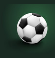 soccer ball isolated on green background sport vector image vector image