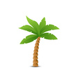 Tropical palm isolated on white vector image