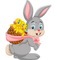 easter bunny carrying basket of baby chicks vector image vector image