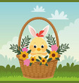 happy easter card with little chick and ears vector image vector image