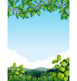 nature with tree leaves vector image