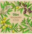 olive branches frame on color background vector image vector image