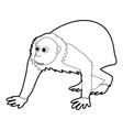 bald wakari icon outline vector image