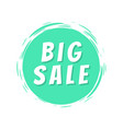 big sale text blue painted spot brush stroke icon vector image