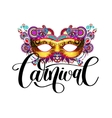 carnival mask silhouette with ornamental floral vector image vector image