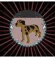 Dalmatian Dog vector image vector image