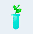 genetic engineering gmo plant in test tube vector image