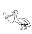 isolated pelican cartoon- hand drawn vector image