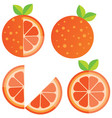 oranges orange slice half cut orange and front vector image vector image