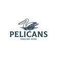 pelican bird elegant style logo vector image