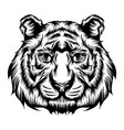 tiger single head for tattoo ideas vector image