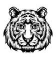 tiger single head for tattoo ideas vector image