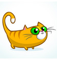 an orange striped cat cartoon vector image vector image