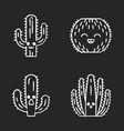 cactuses chalk icons set vector image
