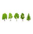 cartoon summer tree set aspen birch maple pine vector image