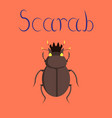 flat on background bug scarab vector image vector image