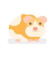 flat style of hamster vector image vector image