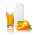 fruit juice packaging realistic composition vector image