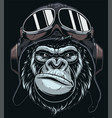 head gorilla in cap pilot vector image