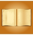 Old open book Yellowed pages wrinkled vector image