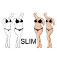 slimness and weight loss vector image vector image