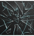 Realistic Shards Of Transparent Broken Glass vector image