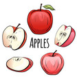 set of cartoon red apples of different shapes on a vector image
