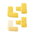 Set of Triangular Pieces Kind Cheese on Background vector image vector image
