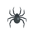 black widow spider icon flat style vector image vector image